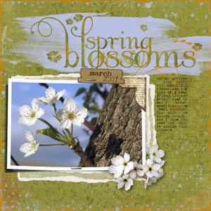 Springblossoms_2