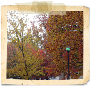Fall2007_4